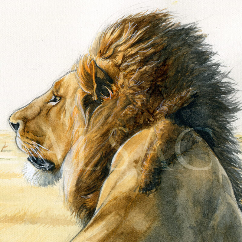 solitary-man-peinture-lion-detail2