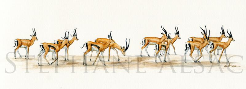 swala-tomi-painting-gazelle