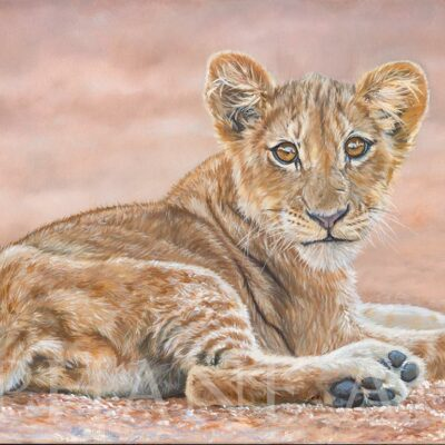 realistic-painting-simba-lion-cub-king