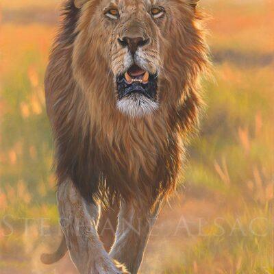 tableau-impression-toile-peinture-grand-format-lion