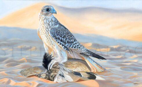 tableau-peinture-faucon-gerfaut-outarde-chasse-desert