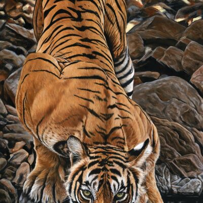 painting-canvas-tiger-bengal