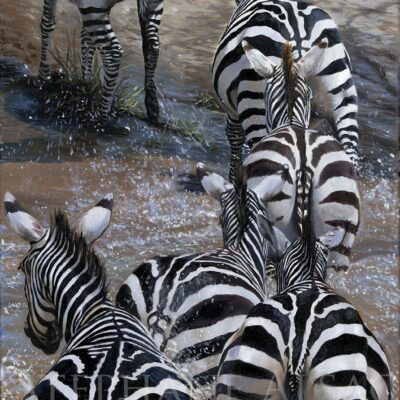 painting-print-canvas-zebras-crossing-river
