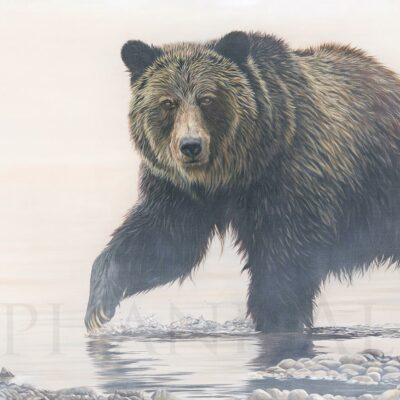 tableau-toile-ours-grizzly-art-animalier-peinture-huile